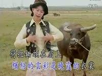 卓依婷乡间的小路经典老歌500首之一性感美女超清